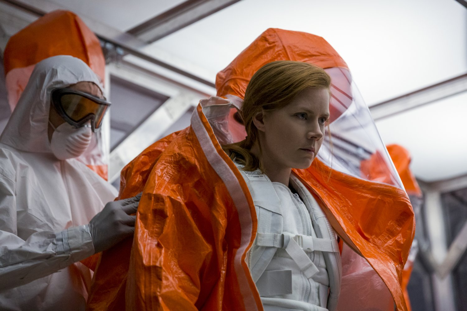arrival6